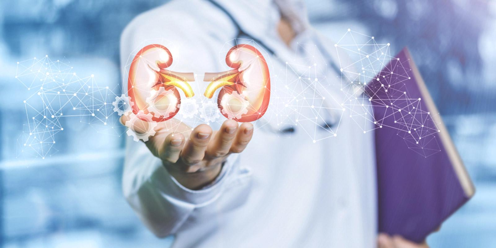 Nephrology (Kidney Disease) Treatment In Iran