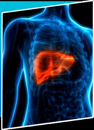 Cancer Treatment 015 Liver Cancer Treatment