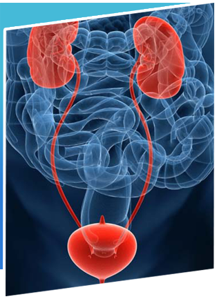 Oiu-Optical Internal Urethrotomy