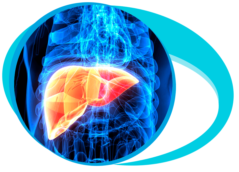 Guidelines for Live Donor Liver Transplantation (LDLT) in Iran
