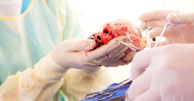 Heart Transplant In Iran